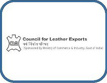 Council for Leather Exports, India